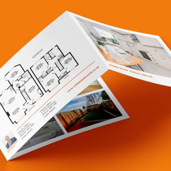 estate agency property flyer
